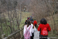 viaje4eso2019-aranpark-077