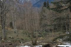 viaje4eso2019-aranpark-093